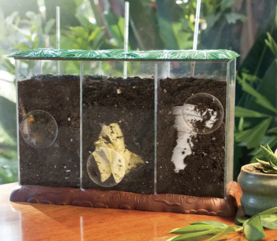 Kids' composting kits for STEM gifts